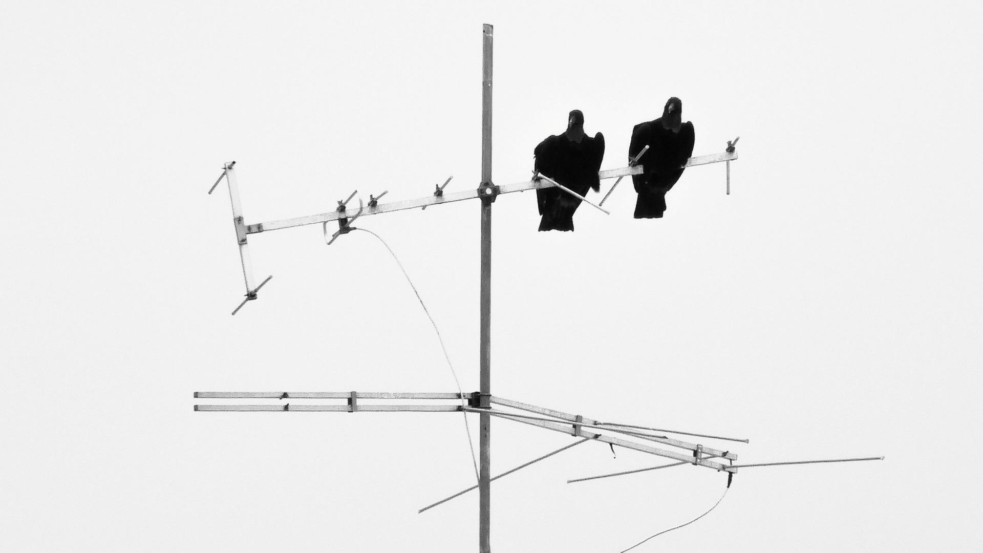 Instalacja okablowania antenowego Warszawa Raszyn